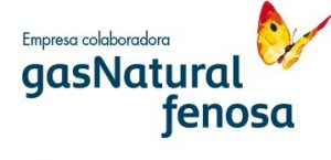 Anastasio Teruel Gas Natural