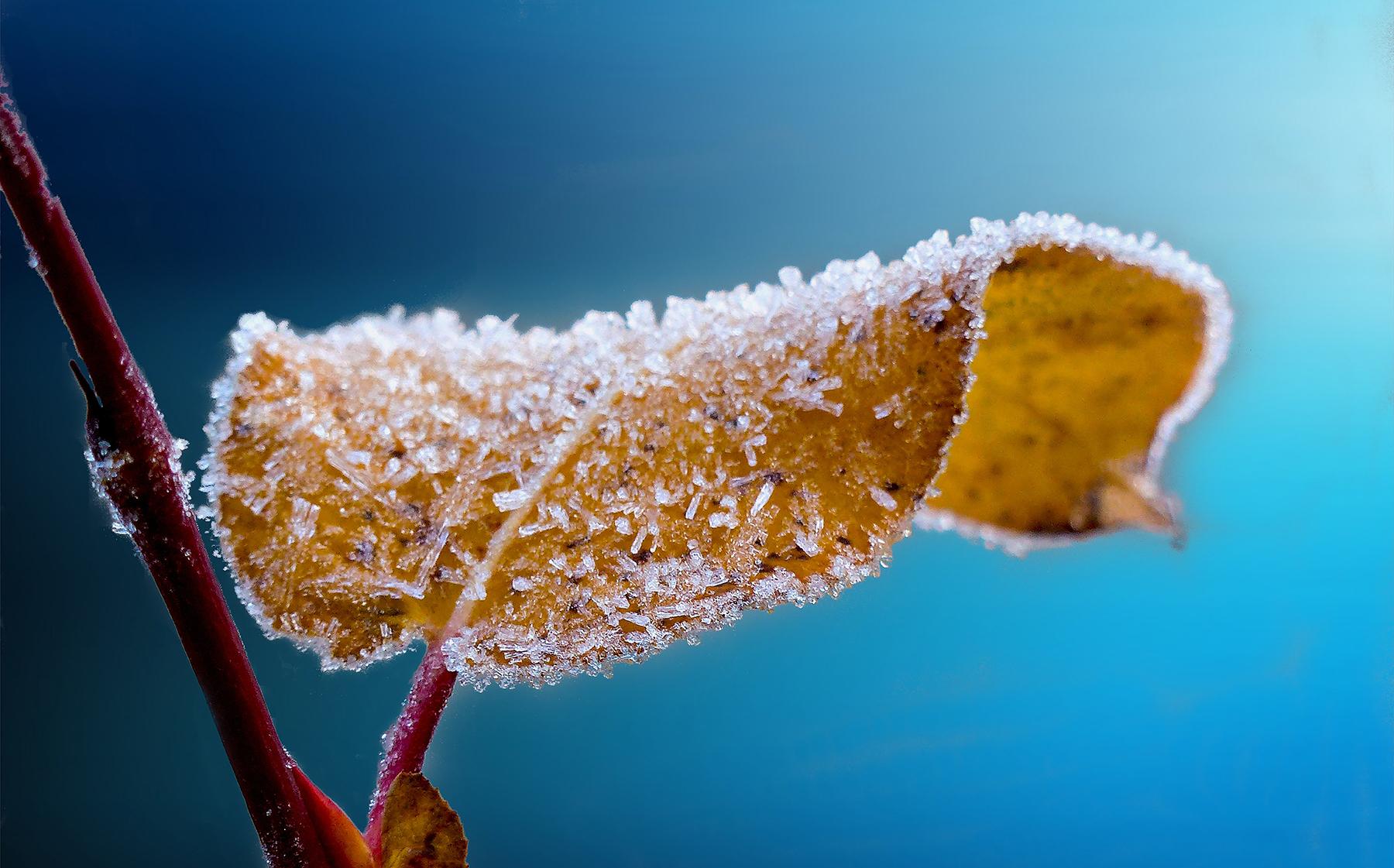 Preparate-para-el-invierno